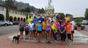 pv runners2